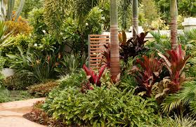 Small Picture Tropical Garden Designs Queensland Pdf spectangular living