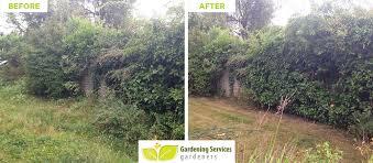 Small Picture Hackney Garden Designers E5 Landscape Gardeners Hackney