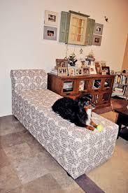 Upholster girl web counter