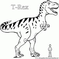 Miglior Collezione Dinosauro Da Colorare E Stampare Disegni Da
