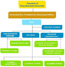 College Of Business Cob Organizational Structure Of