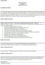 Examples Cv Civil Service Cv Example Lettercv Com