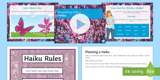 What's The Pattern Of A Haiku Awesome Recognising Haikus Lesson Teaching Lesson Pack Recognise