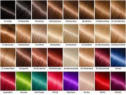 L K Hair Color Shades Beauty City