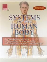 Body Systems Chart Human Body Systems Flip Chart Scientific Publishing