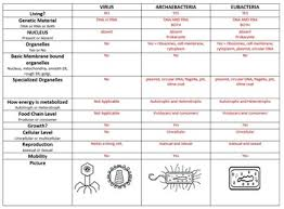 Biological Classification Chart Taxonomy Classification Bundle Power Point And Chart