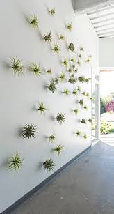 greenery office interiors. Plants That Are Low Maintenance And Create A Focal Point Without Cluttering The Space Design Office Interior House Decoration Greenery Interiors E