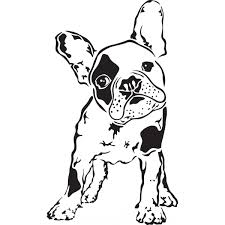 Small Picture Boston Terrier Coloring Page At itgodme
