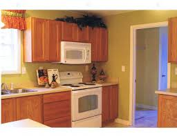 Kitchen Cabinets Color Ideas With Oak Small Paulshi
