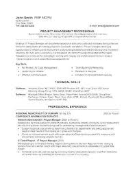 Marketing Manager Resume Classy It Manager Resume Examples Inspirational Marketing Project Manager