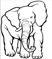 Elephant Drawing Cartoon At Free For Personal Use Cartoon Elephant