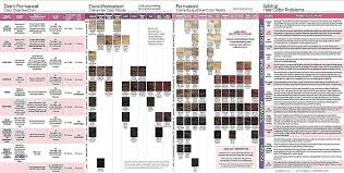 7 Hair Color Heredity Chart Coloringsite Co Hair Color
