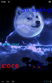 doge wallpaper android. Perfect Doge Screenshot Image On Doge Wallpaper Android G