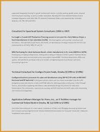 It Manager Resume Amazing Technical Project Manager Resume Sample Luxury Resume Of Project