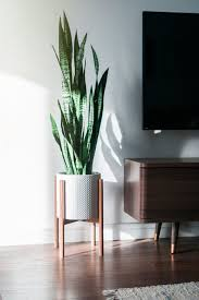 mid century modern inspired furniture. mid century modern plant stand inspired by the this beautiful style is perfect decor piece for any room furniture
