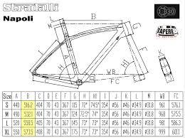 Stradalli Napoli Geometry And Size Chart Bike Frame