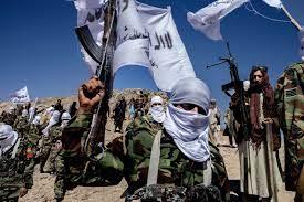 Taliban erobern Afghanistan zurück: »Bleiben wäre Selbstmord« - DER SPIEGEL