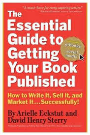 Bol Com The Essential Guide To Getting Your Book Published