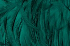 Teal Background Vectors Photos And Psd Files Free Download