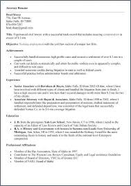 Resume Professional Summary Examples New Summary Example For Resume Fresh Resume Professional Summary Luxury