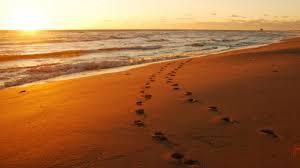 Resultado de imagen para huellas mis pies en la arena