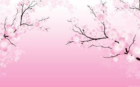 Cherry Blossom Wallpaper Cherry Blossom Pictures Cherry