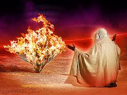 Image result for Moses burning bush image