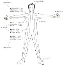 twelve primary channels meditation pinterest acupuncture Meridian Lines Body Map tai chi qigong meridian lines body map