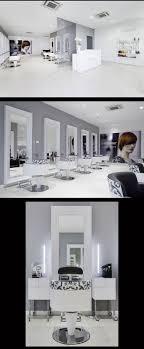 White Gray And Black Hair Salon