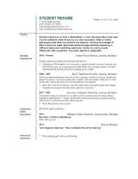 Objective Summary Resume Resume Objective Summary Free Resume Templates 100 63