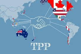 Image result for the tpp