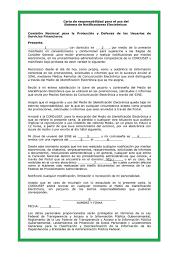 Formato De Carta De Responsabilidad