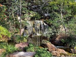 credit robert pittman via flickr link copied to clipboard morikami museum japanese gardens