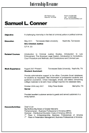 Intern Resume Examples Wonderful American Resume Sample Internship Pictures Inspiration 55