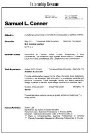 Intern Resume Examples Wonderful American Resume Sample Internship Pictures Inspiration 55