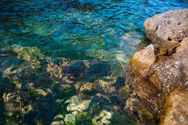 Sea Stones In The Water Background High Quality Free