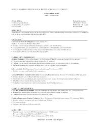 Traditional Resume Template Free – Mklaw