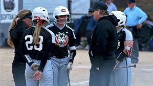 By the end of next quarter, my goal is to improve my knowledge of ux/ui practices by taking an online training session. Softball Adds Heagle To Coaching Staff St Cloud State University Athletics