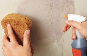 Thing To Use To Remove Wallpaper Glue