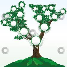 Family Tree Vector Free Download At Getdrawings Com Free For