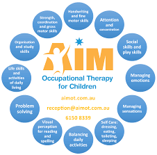 possible areas for occupational therapy input