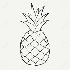 pineapple drawing. outline black and white image of a pineapple royalty free cliparts, vectors, stock drawing t