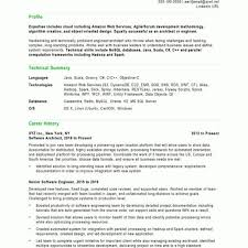 Software Developer Free Resume Samples Blue Sky Resumes With Mesmerizing Blue Sky Resumes