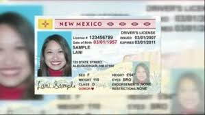 Driver's Licenses Mail No Valid Online 5 To Daily From Longer Will Be Plane Domestic A States Board