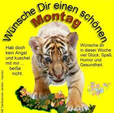 Sprüche Suche Montag Bilder Und Sprüche Für Whatsapp Und Facebook