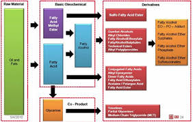 Oleo Chemicals Hargun Agro Industries Pvt Ltd