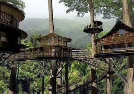 Hidden Canopy Treehouses  Monteverde Costa Rica  Viaje A Costa Treehouse Monteverde Costa Rica