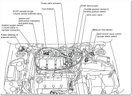 2010 nissan altima engine diagram diagram chart gallery rh diagramchartwiki nissan altima 2 5 engine diagram