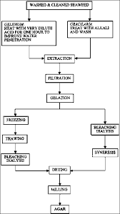 Food Production Flow Charts Examples 13 Specific Liquid Manufacturing Process Flow Chart