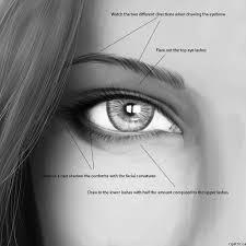 eyebrow shading drawing. eye drawing in photoshop eyebrow shading r